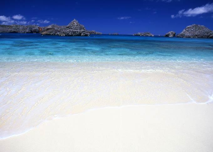 小笠原諸島の画像 p1_15